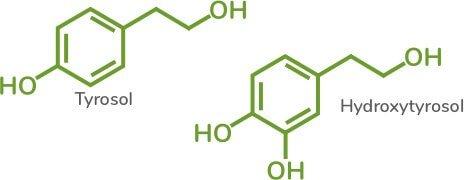 Trephenol_Molecules